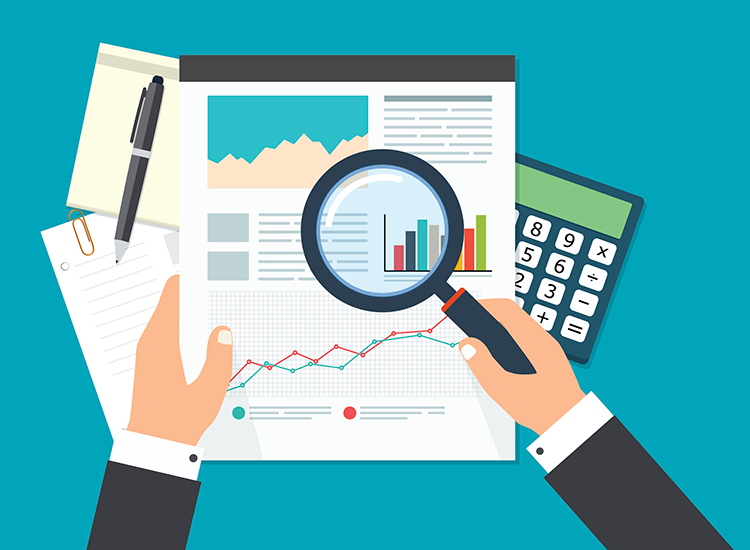 Benefits of Being an Auditor